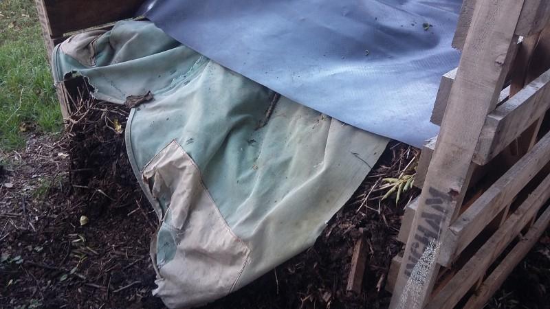 compost maturing in a pallet bin